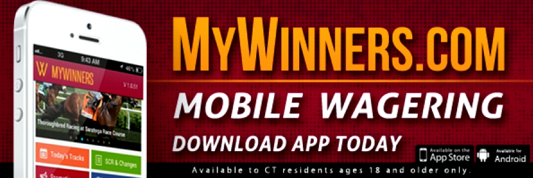 mywinners review